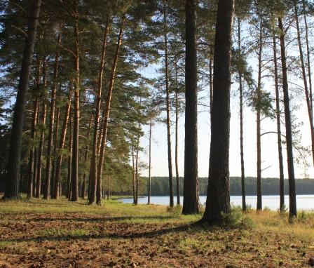 Томская область, озеро Самусь.