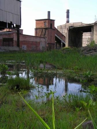 Отражение 3
